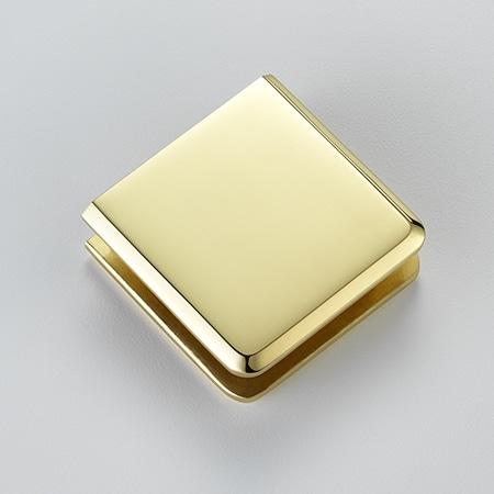 Frameless Swing Door Finish - Brass - DSI Glass Aurora